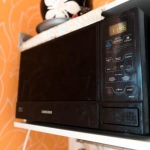 микроволновая печь до удорки